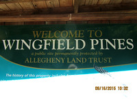 2015 Wingfield Pines
